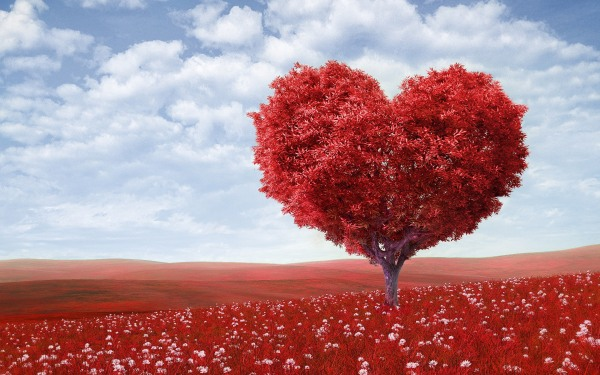 heart-tree-