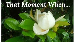 That Moment When-white1