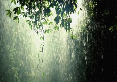 raining-greenish