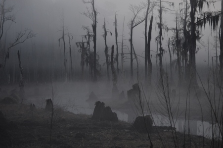 gassy swamp